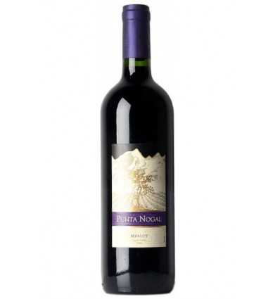 Vin Chile, Punta Nogal Merlot rosu 75cl