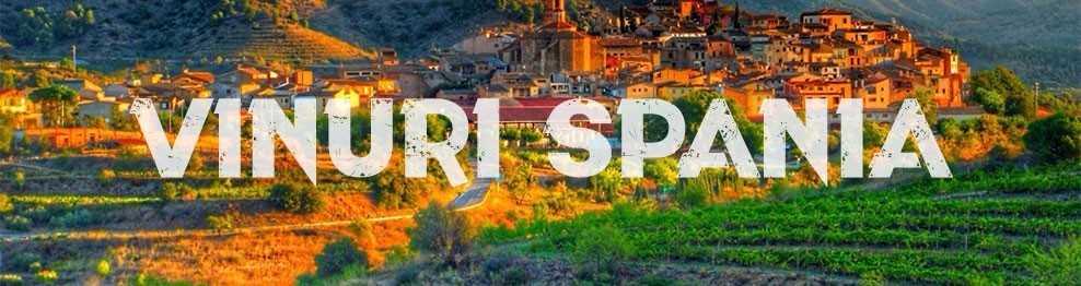 Vin Spania